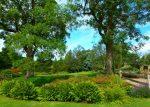 Harlow Carr, RHS Garden, Harrogate